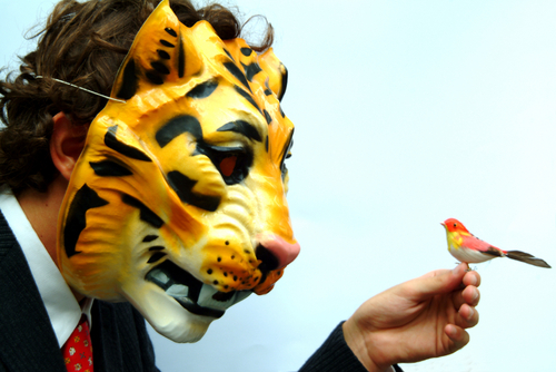 Tiger_and_lunch